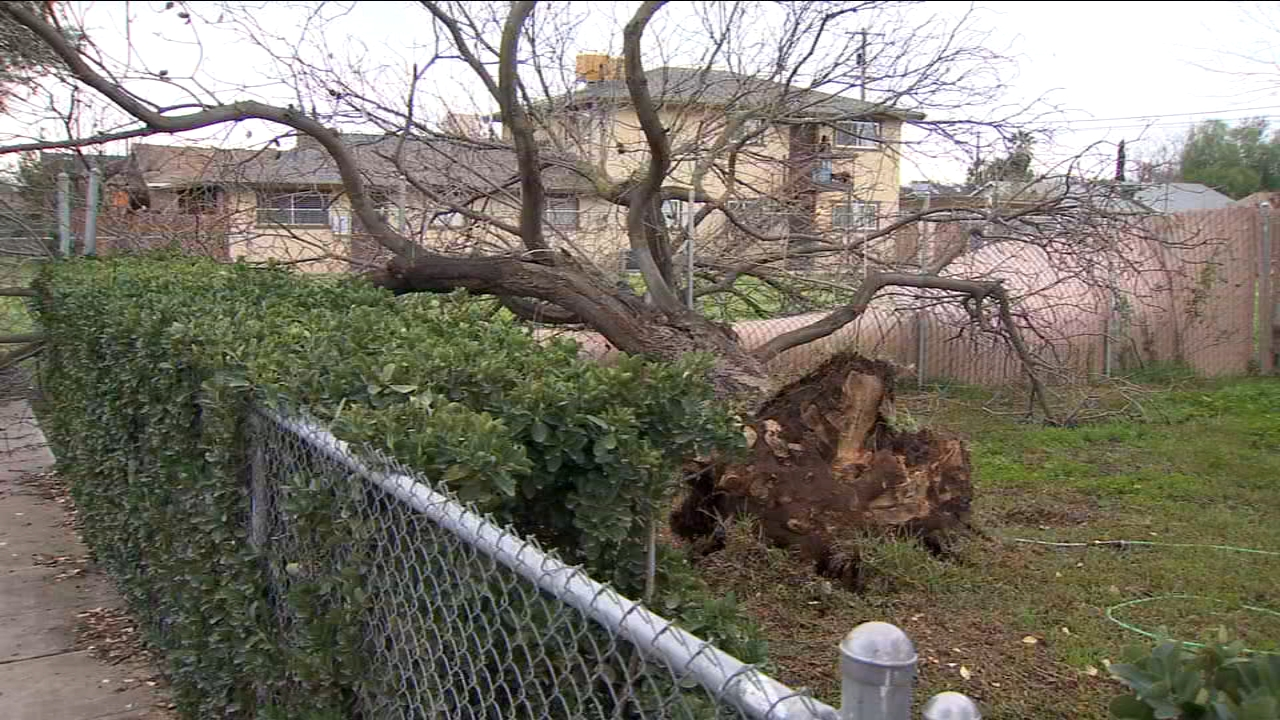 Clean-up crews and residents were busy after Sunday nights storm.