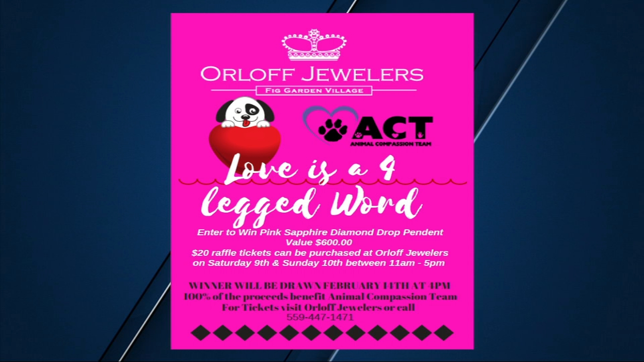 Animal Compassion Team (ACT) and Orloff Jewelers have joined forces to help several animals looking for homes in the Central Valley.