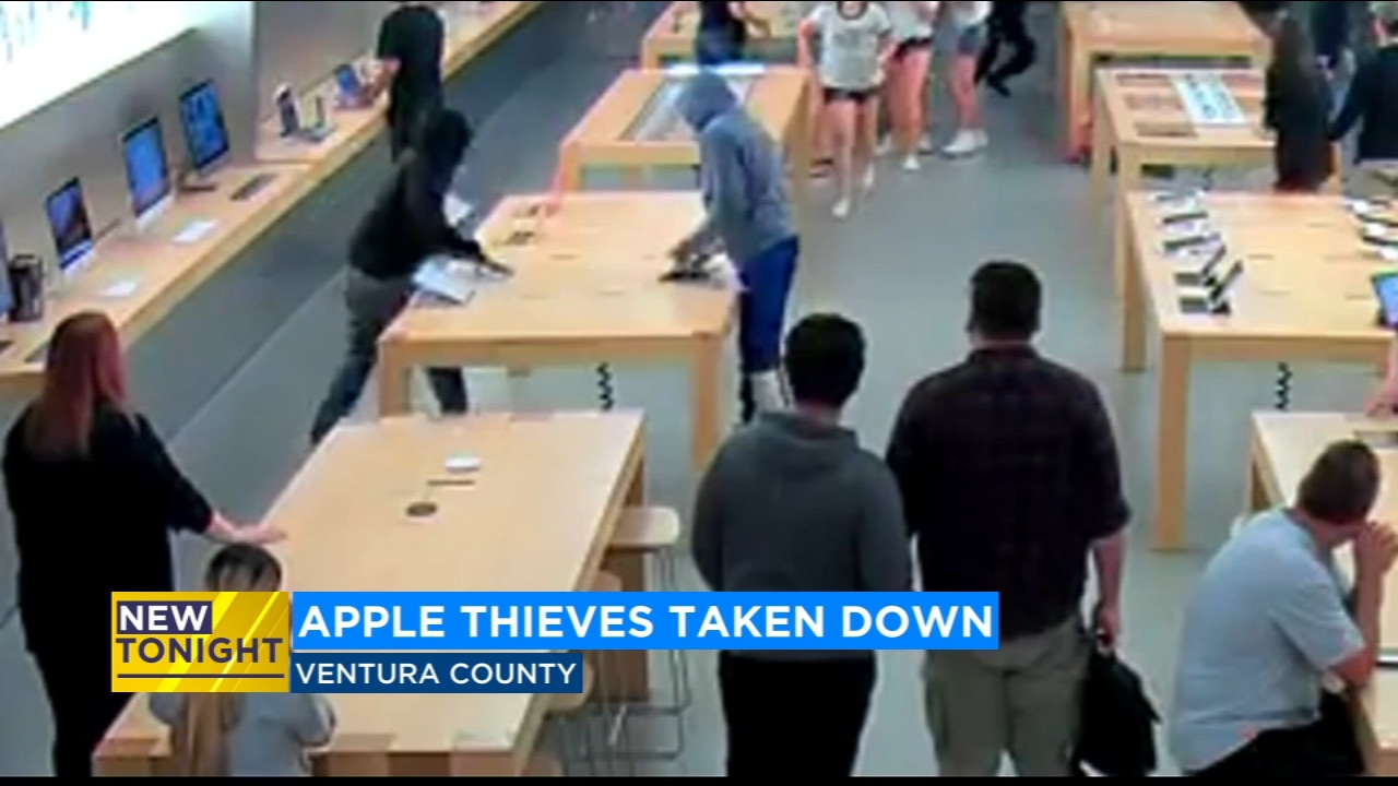 A group of thieves accused of robbing several Apple stores across the state is now in custody.