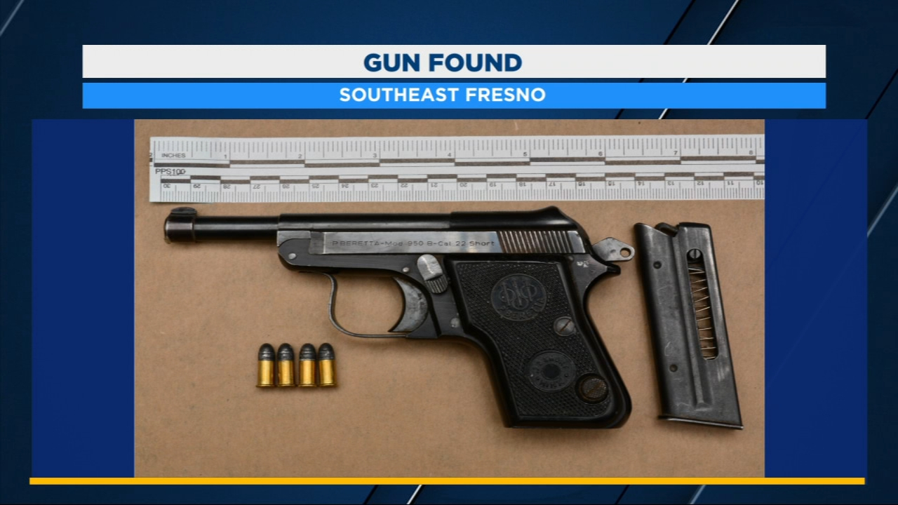 A driver and teenager are in police custody, arrested for possessing a loaded gun during a traffic stop in Southeast Fresno.