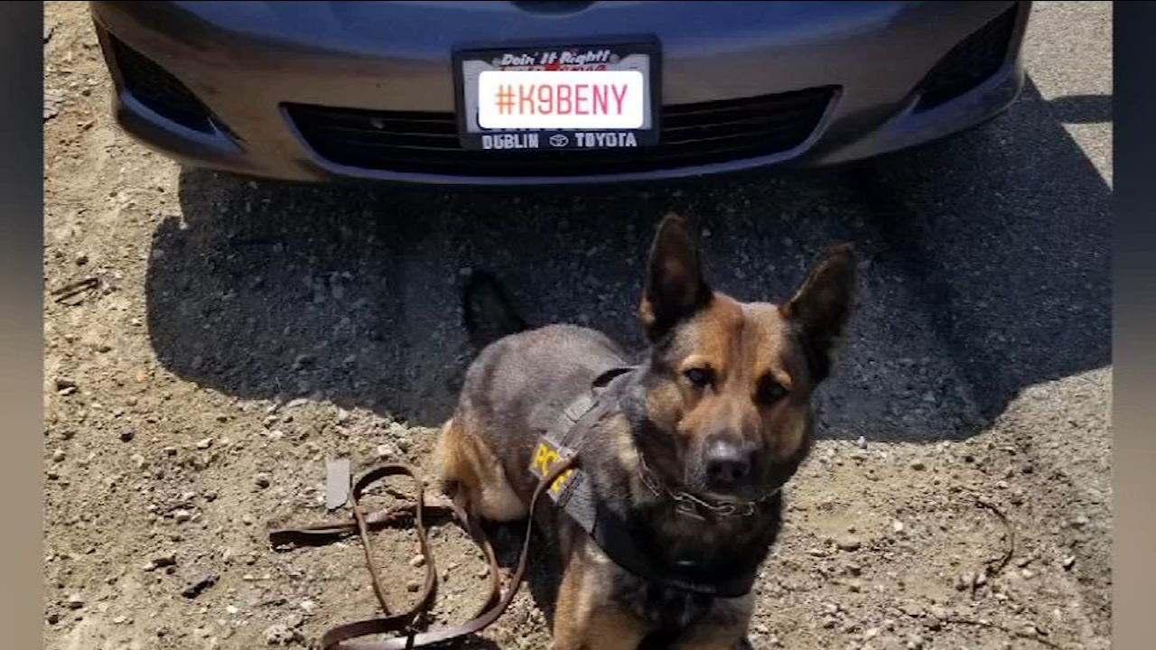 CHP K-9 officer Beny is being praised for uncovering drugs inside of a vehicle during a traffic stop near Firebaugh.