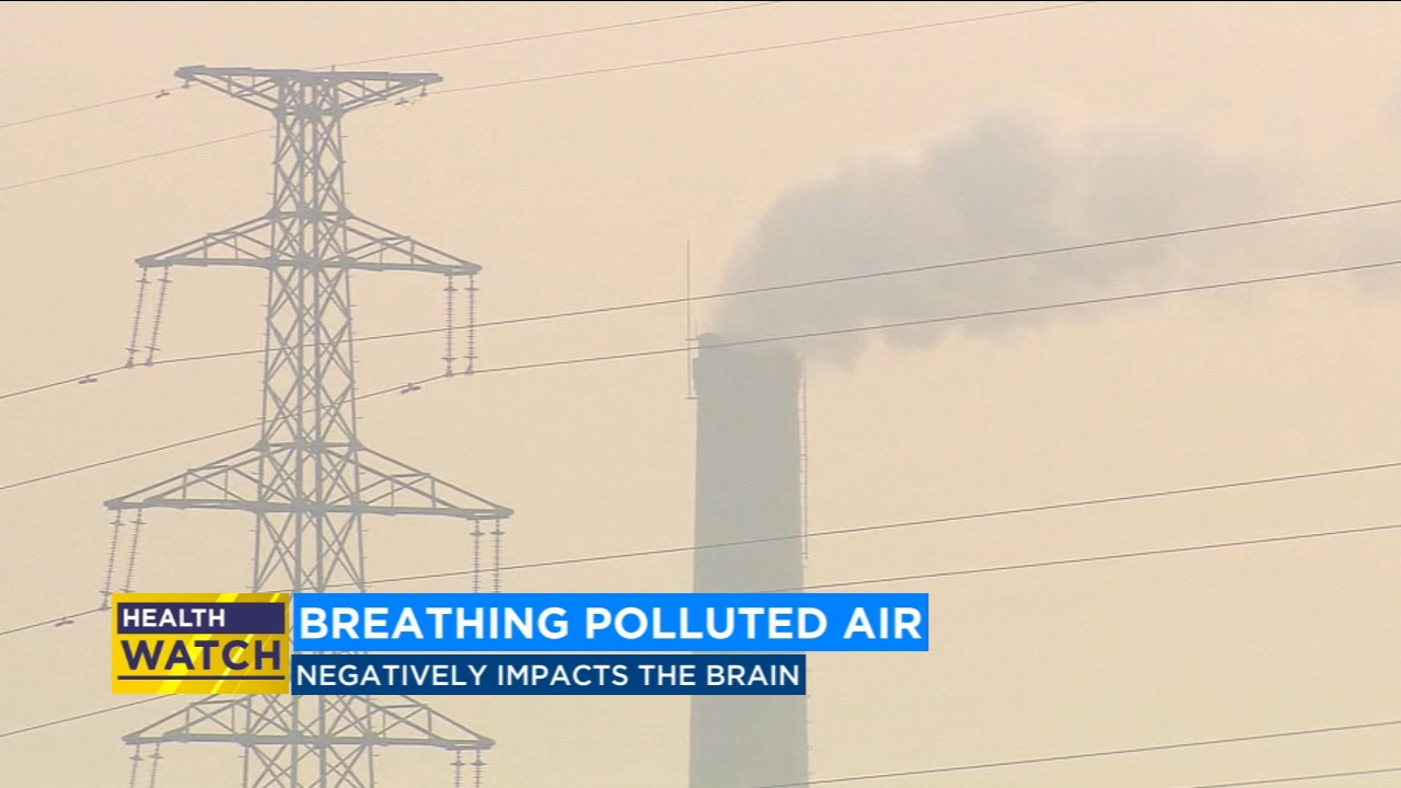 Air pollution may do more than affect your lungs it could also impact your brain.