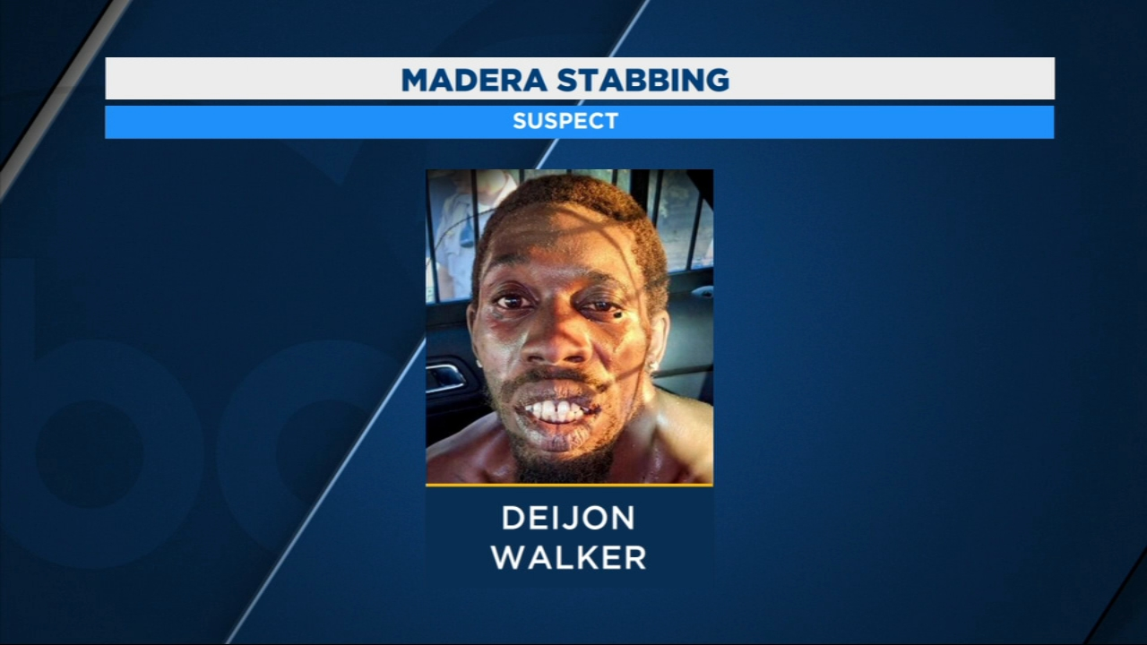 The Madera man accused of killing two of his own family members and stabbing his cousin pleaded not guilty in court.