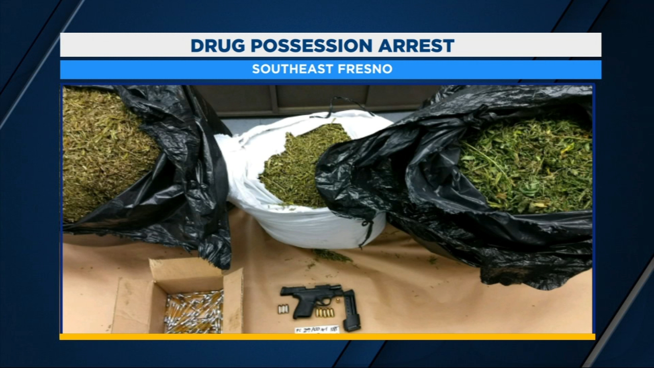 Fresno police officers uncovered more than 60 pounds of marijuana, and dozens of honey oil filled cartridges, when they pulled over a driver for a vehicle code violation.