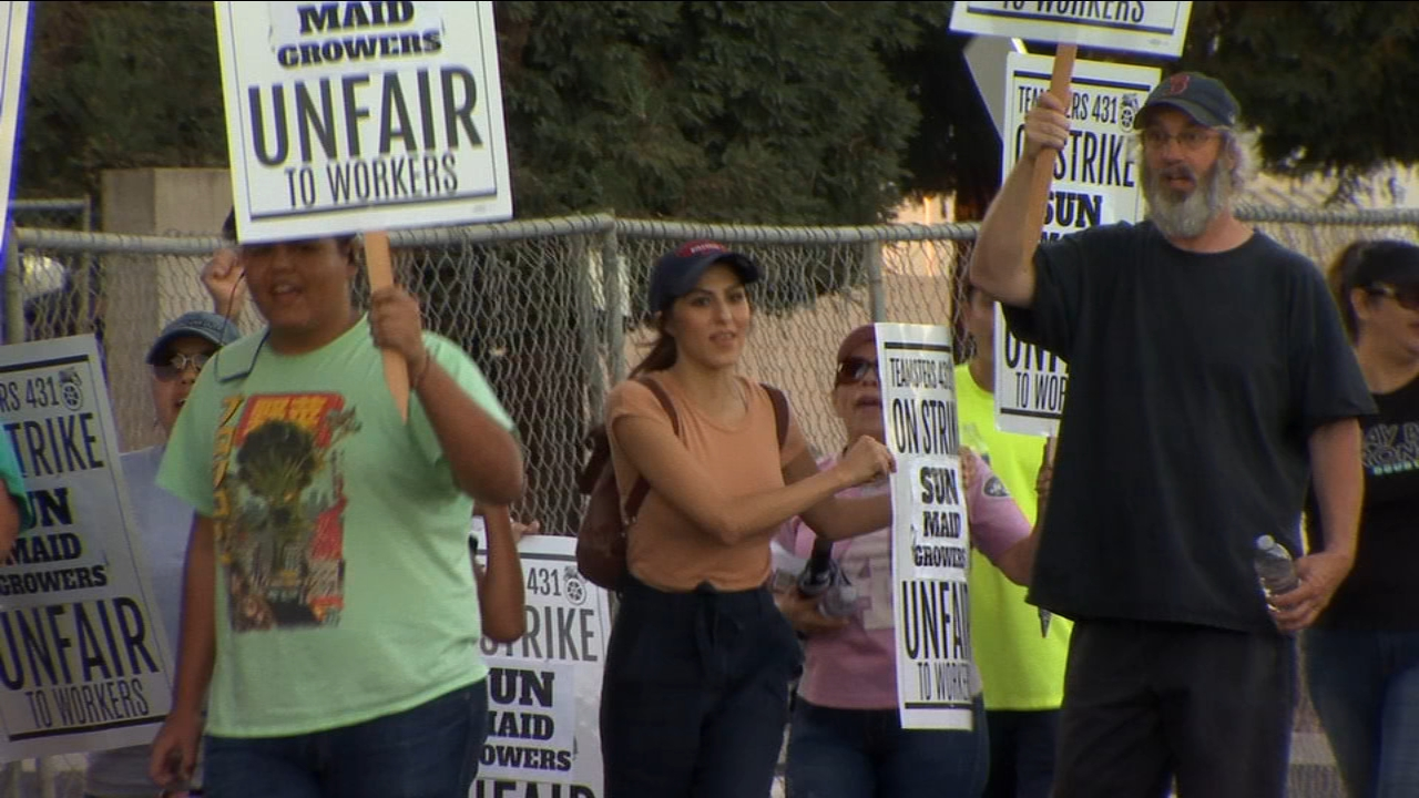 A thousand Sun-Maid employees walked out on the job on Monday at 3 p.m. to protest unfair wages.