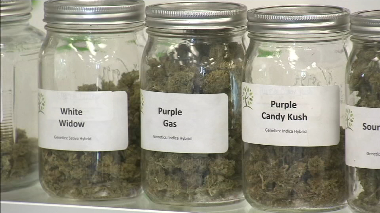 If City Leaders have their way, Fresno would become the latest California city allow the legal sale of medical marijuana.