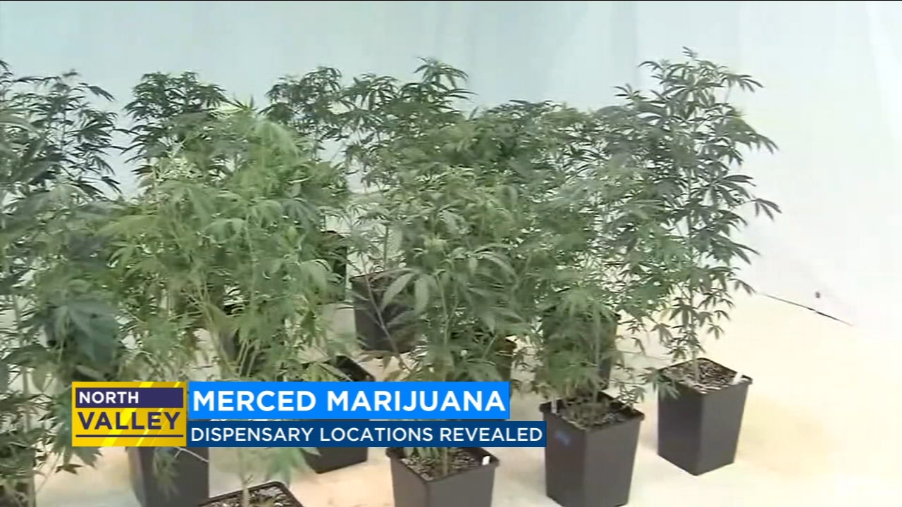 Merced's citys planning commission approved four marijuana dispensaries after two days of public hearing.