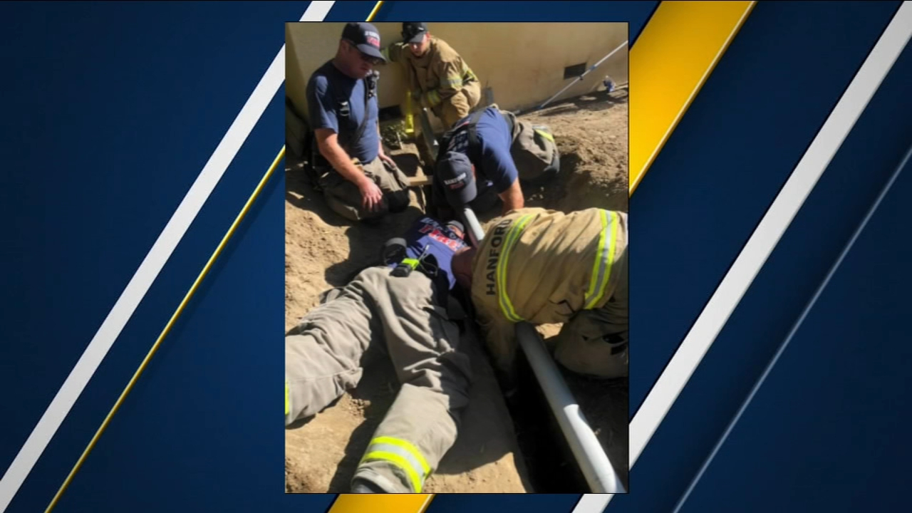 Hanford Fire Department worked together to make sure a dog got home safe on Sunday.