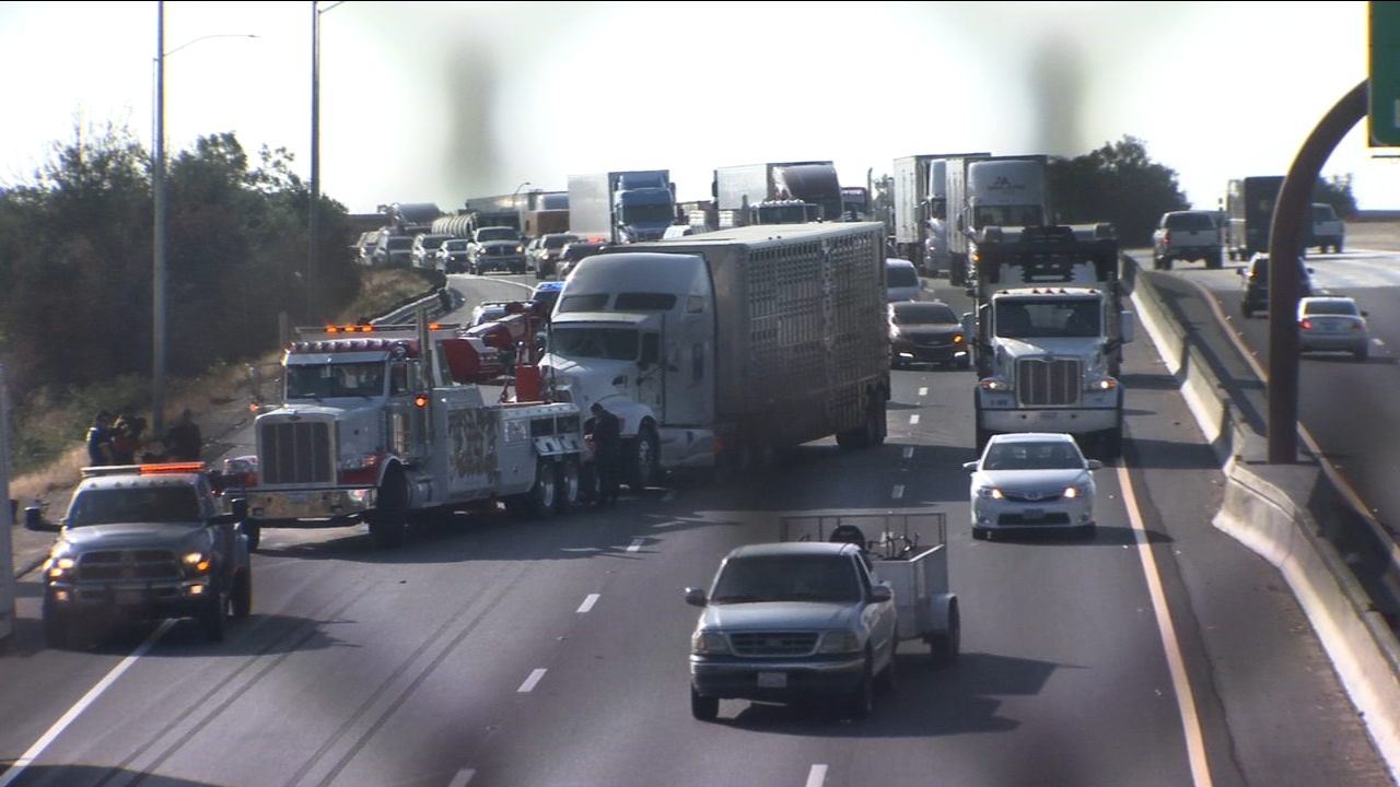 It happened just before 9 a.m. when the truck hauling cattle hit the back of another semi careening into two other vehicles.