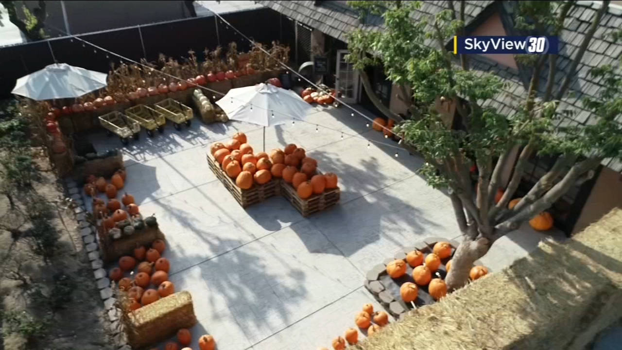 Colorful and cheerful pumpkins line and stack the displays at Farm and Table in Kingsburg