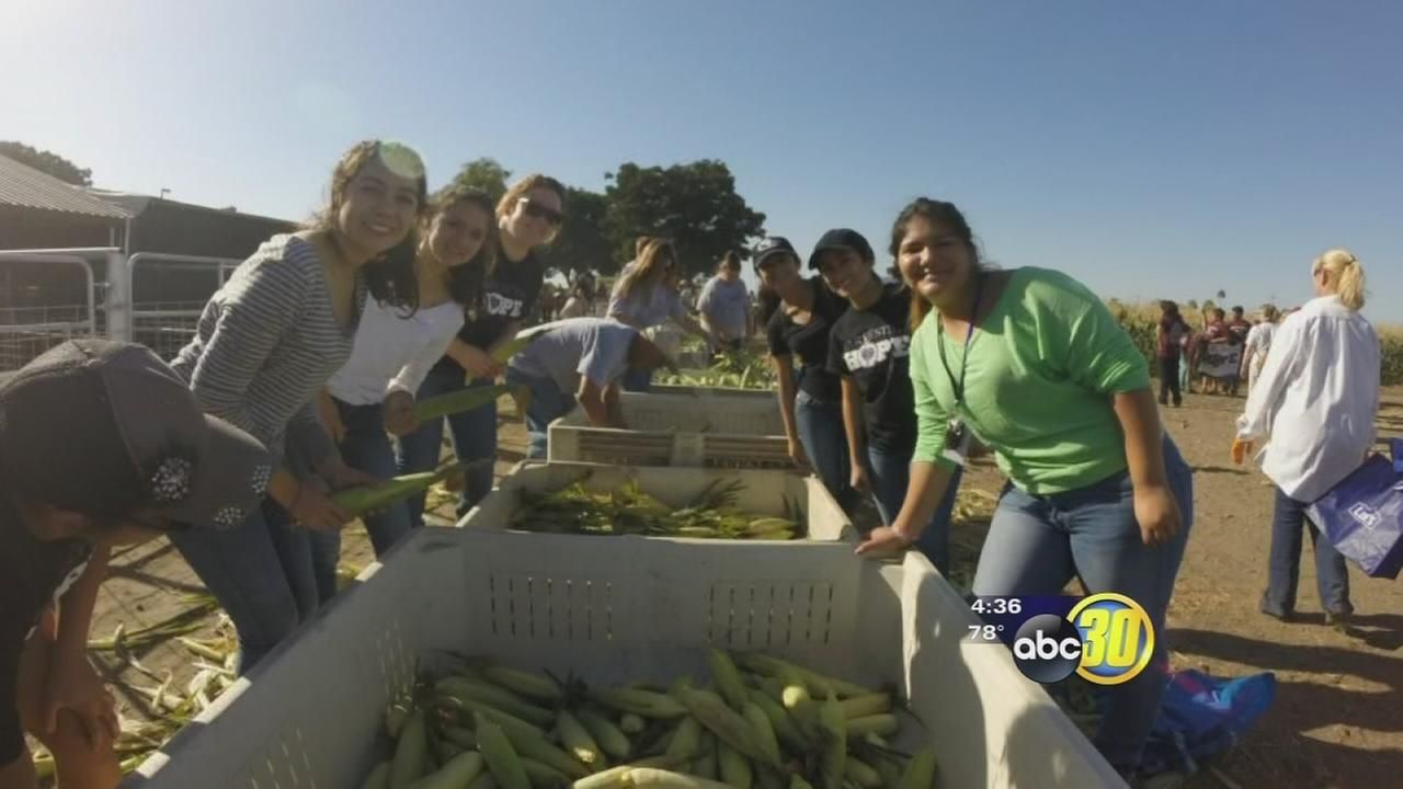 South Valley students are joining the fight against hunger