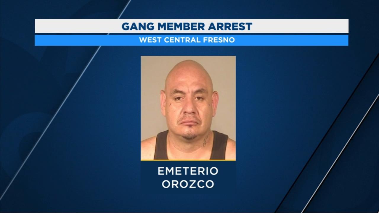 Gang member arrested after stabbing and assault