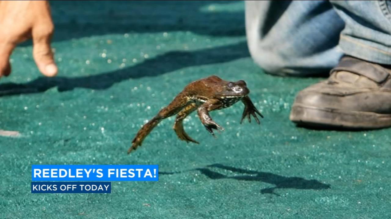Reedleys fiesta kicks off this weekend