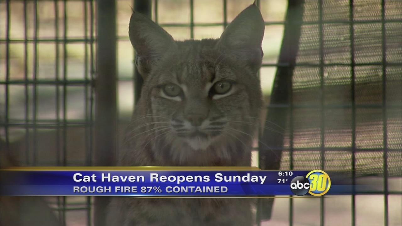 Cat Haven back open