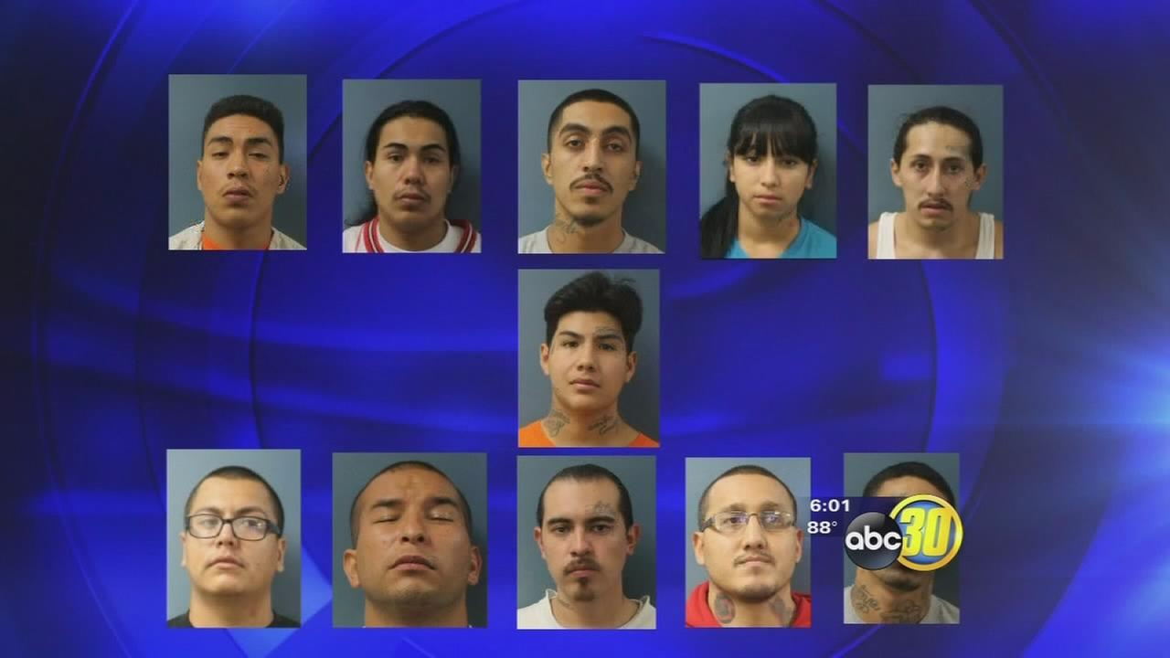 678 Arrested In ICE-Led Gang Sweep - Special Units ...