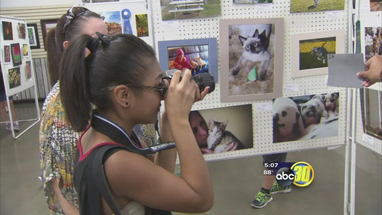 Free activities at the fair helps families make memories affordable