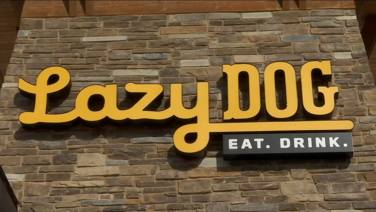 With applause and cheers The Lazy Dog staff welcomed their restaurant to Northwest Fresno. Guests made their way inside for the first time. Some on two legs, others on four.