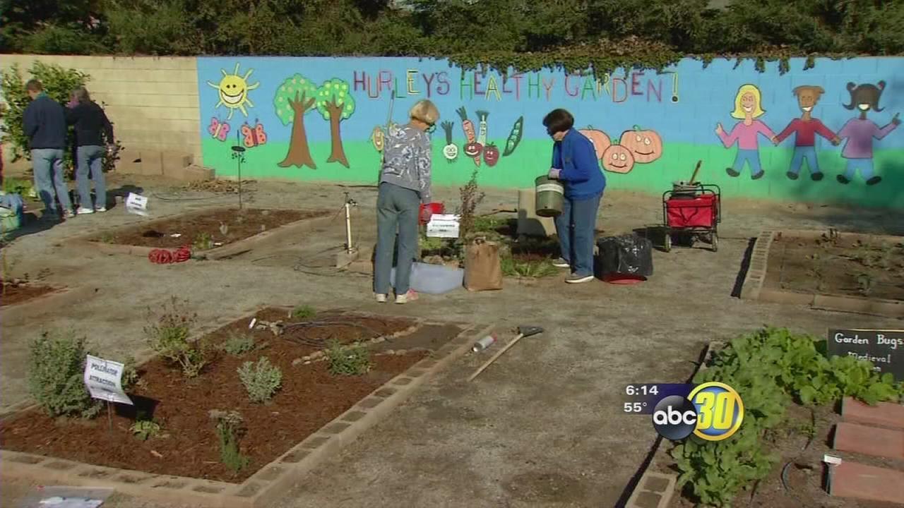 Visalia kids plant drought resistant garden