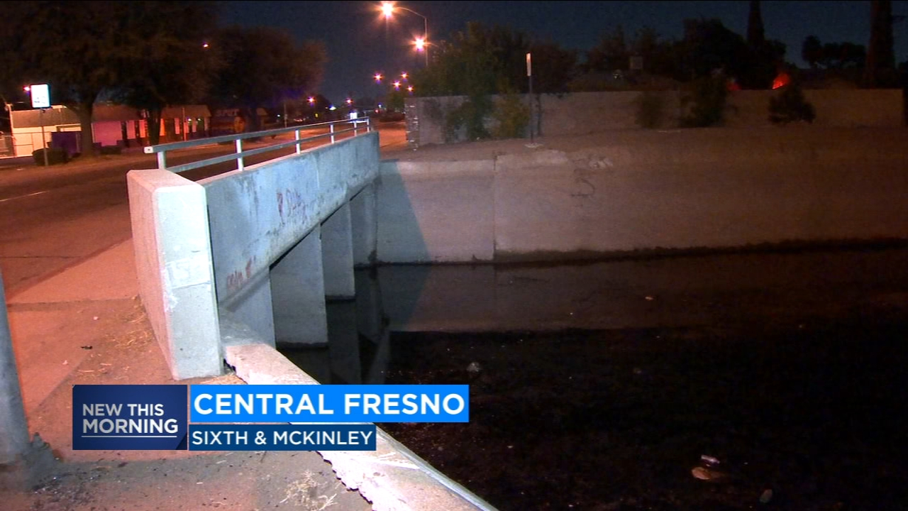 Good Samaritans help rescue man from Central Fresno canal