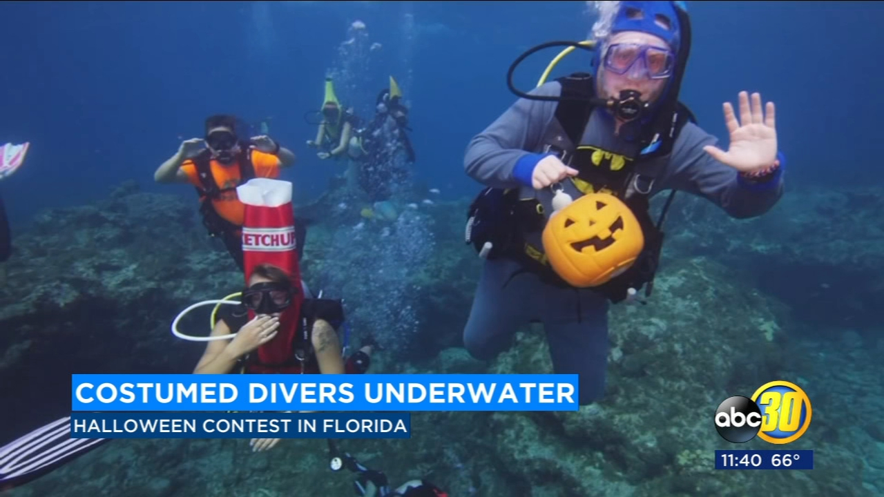 Florida scuba divers compete in underwater costume contest, Instagrammers vote for winner