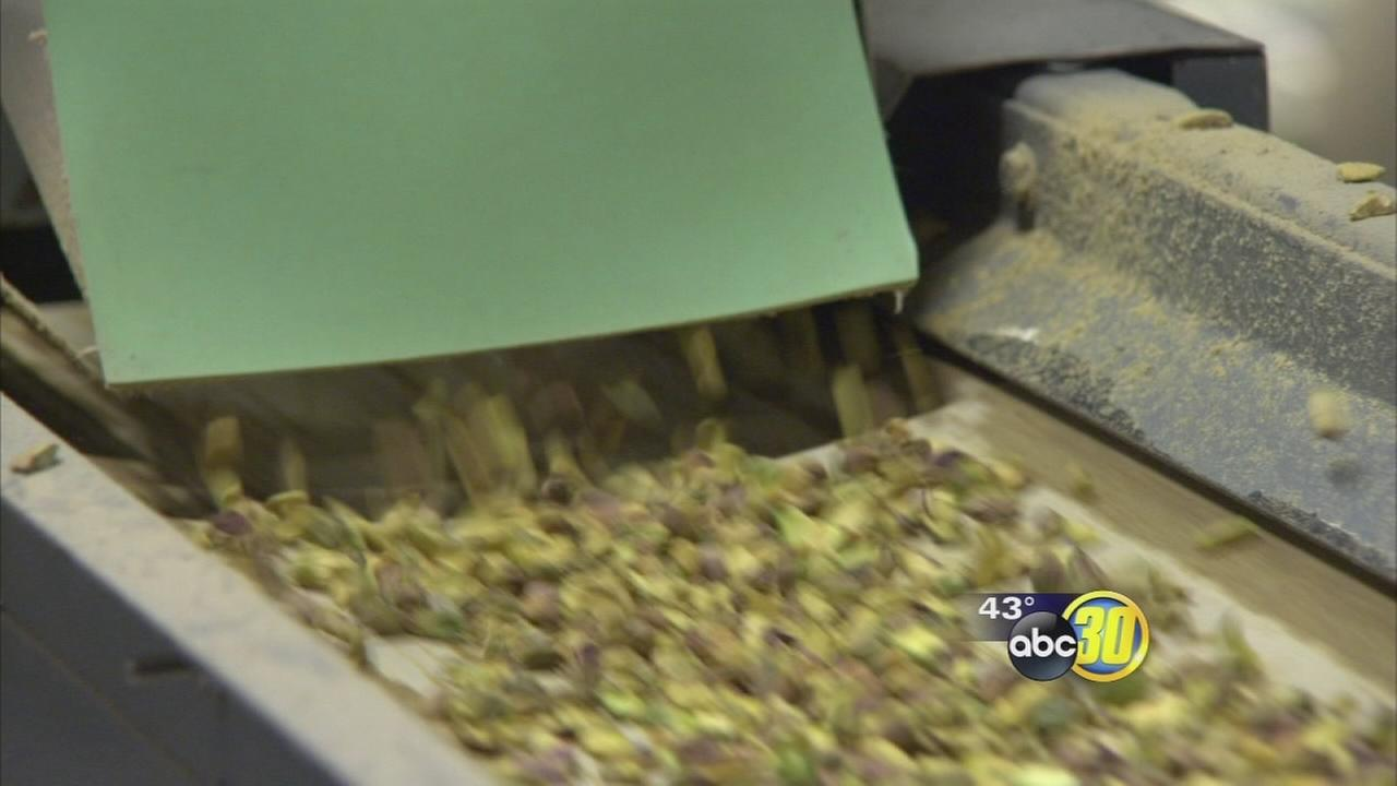 Nearly half million dollars of pistachios stolen from local plant