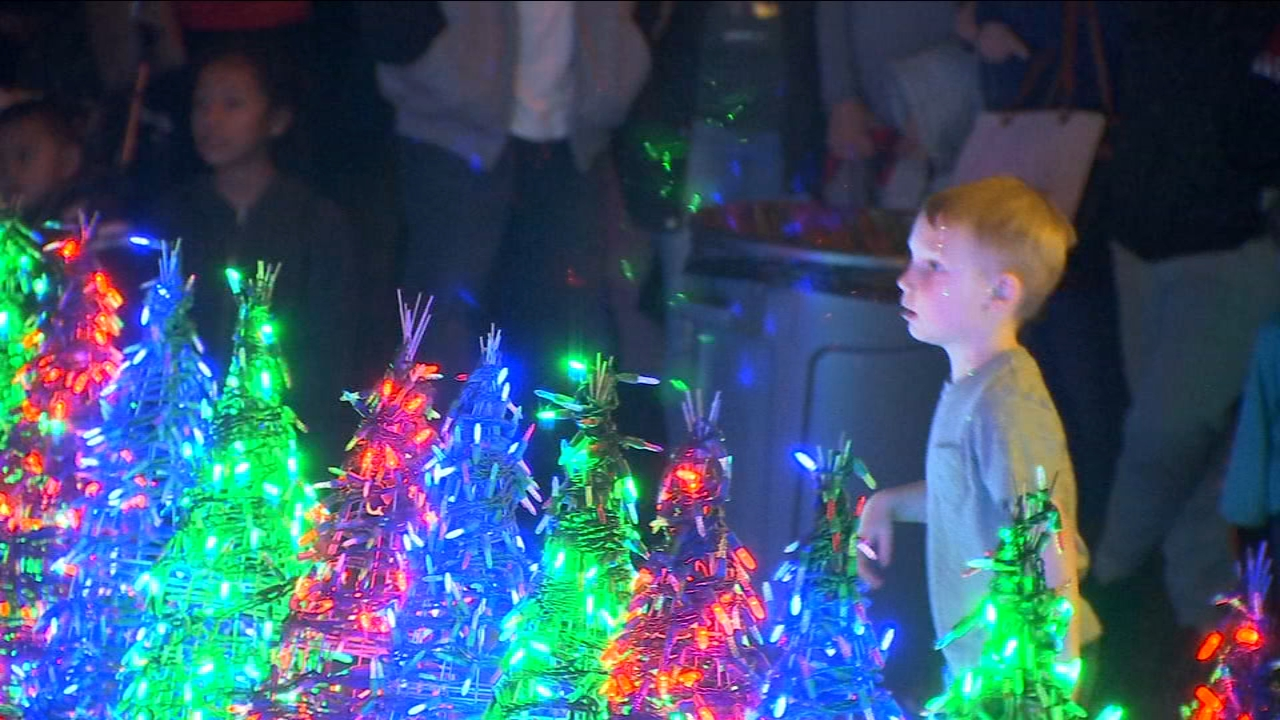 Fresno family kicks off Christmas season with 26,000 LED light display. Here's how you can see it