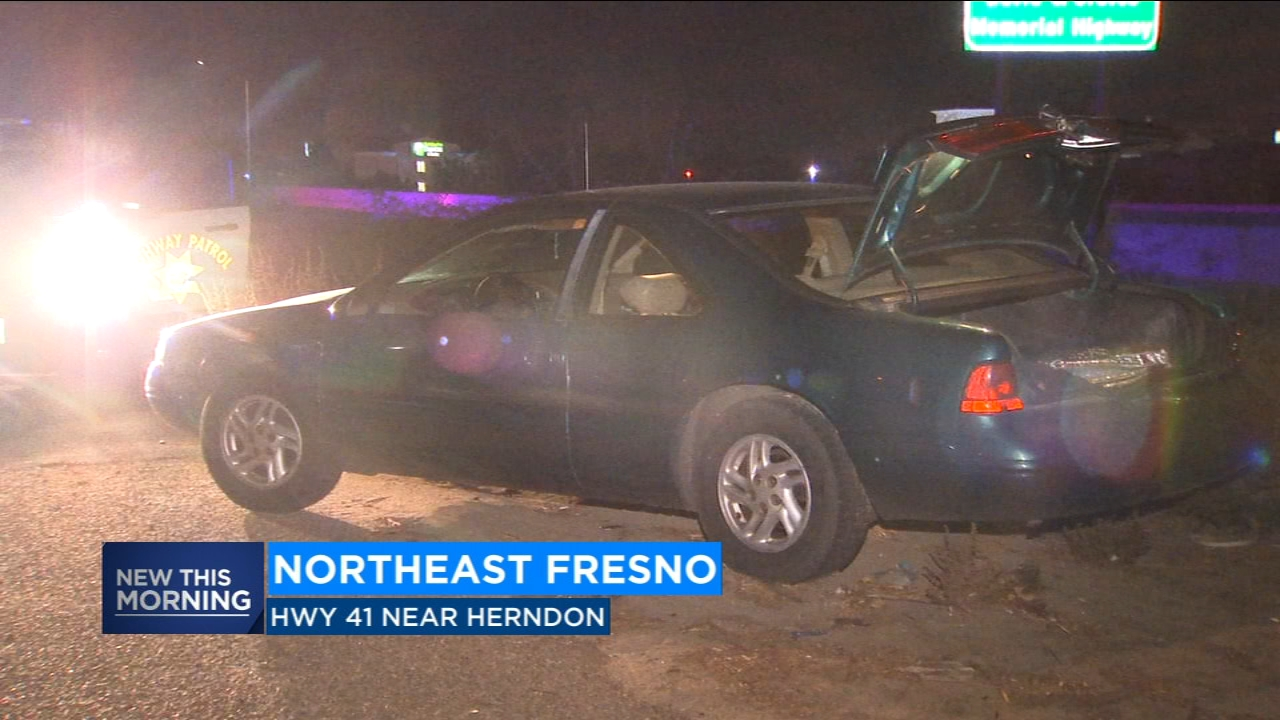 Man takes off during traffic stop, leads Fresno Police on chase