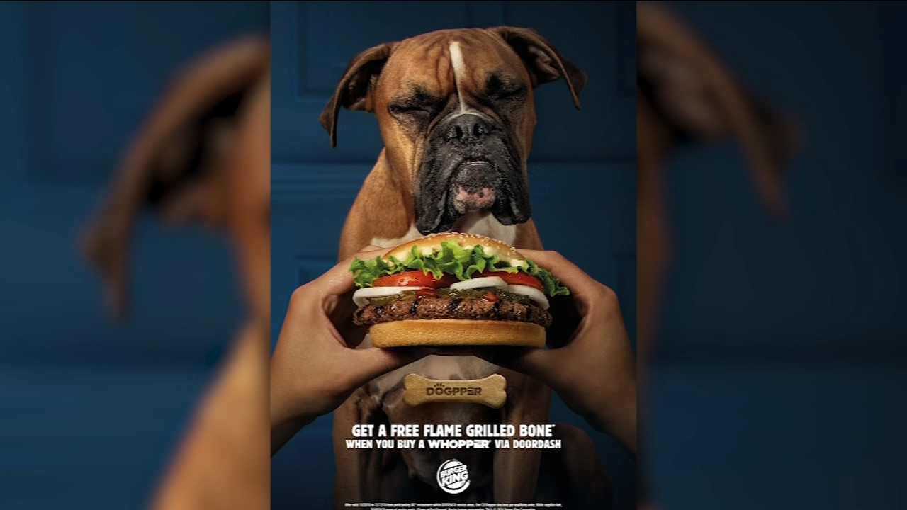 Burger King launches dogpper treats for dog parents who order Whoppers through DoorDash