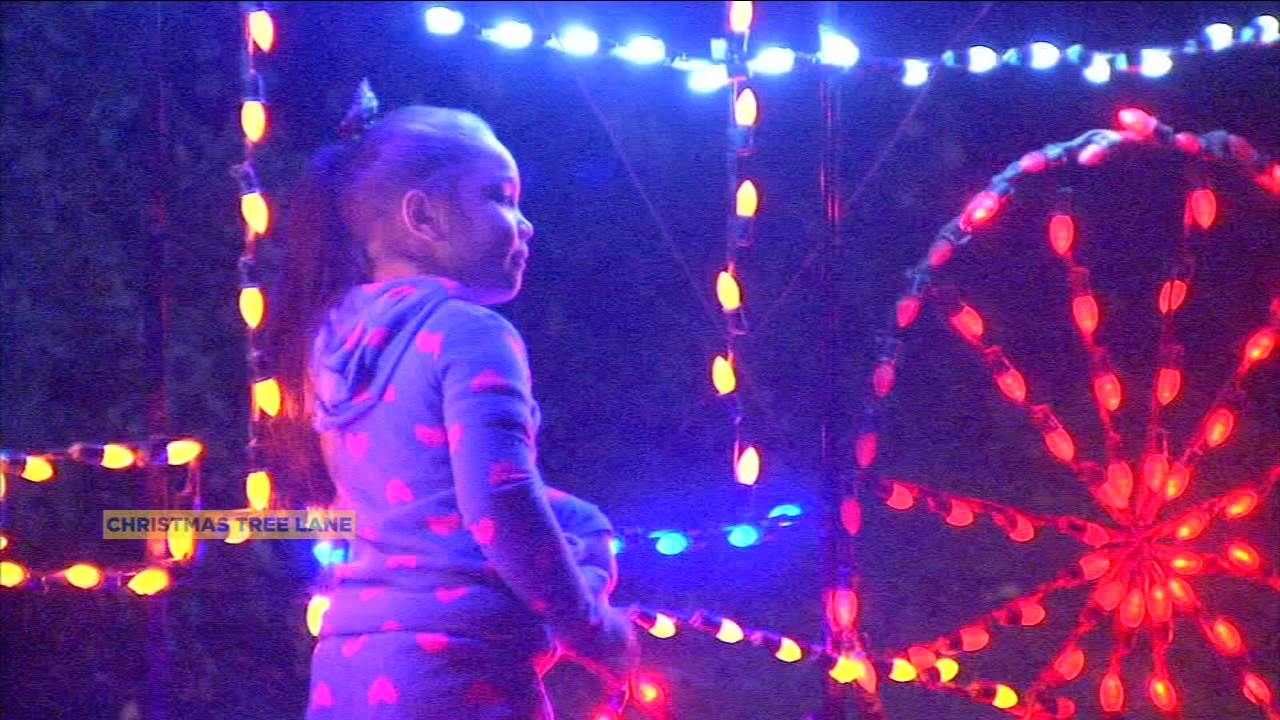 Kick off the holiday spirit by soaking in the light display on Christmas Tree Lane this weekend.