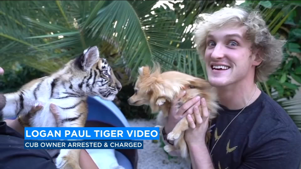 A man is facing charges of illegally possessing and mistreating a tiger cub. that appeared on a video with Logan Paul.