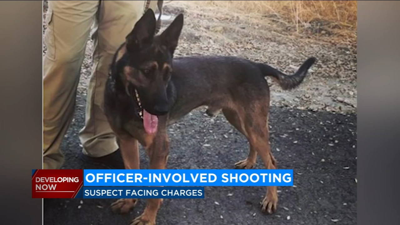 A Visalia man is expected to face charges as soon as Tuesday for his alleged role in a police shootout that injured a Tulare officer and killed his canine partner.