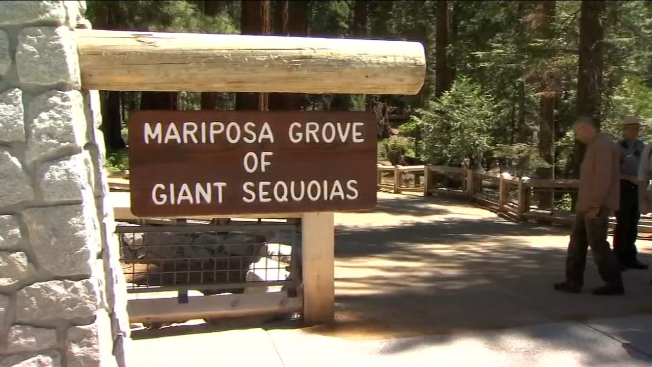 Two areas of Yosemite National Park closed due to lack of restroom services