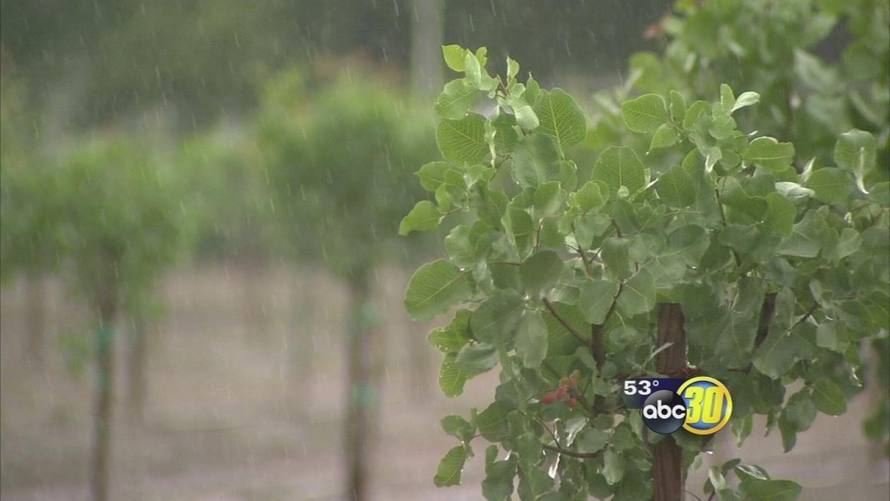 Spring storm brings hail, thunder, and minor flooding to the Valley