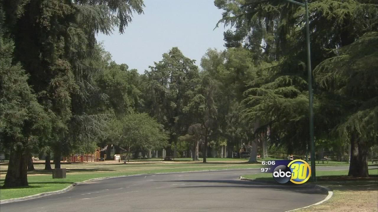 Major project to revive Fresnos green spaces underway