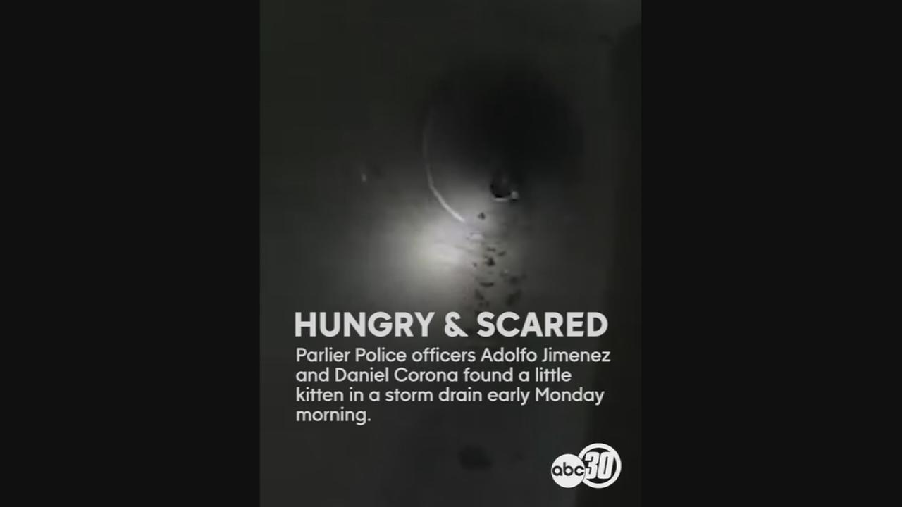 Hungry and scared