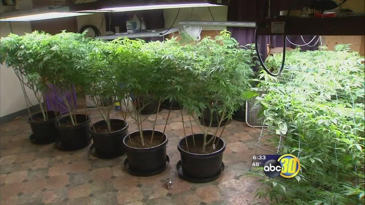 Tulare County Supervisors say no to non-medical commercial marijuana by passing interim ordinance
