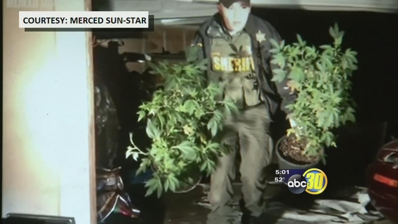 Deputies discover indoor pot grow in Winton after house fire