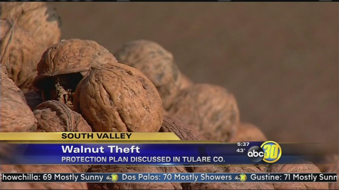 Walnut theft prevention ordinance moves forward in Tulare Co
