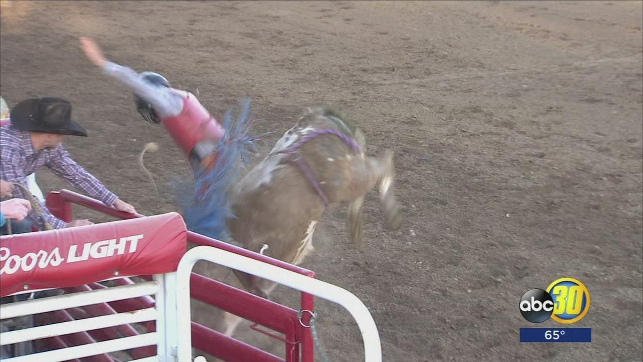 Battle between beast and man takes center stage at the Clovis Rodeo