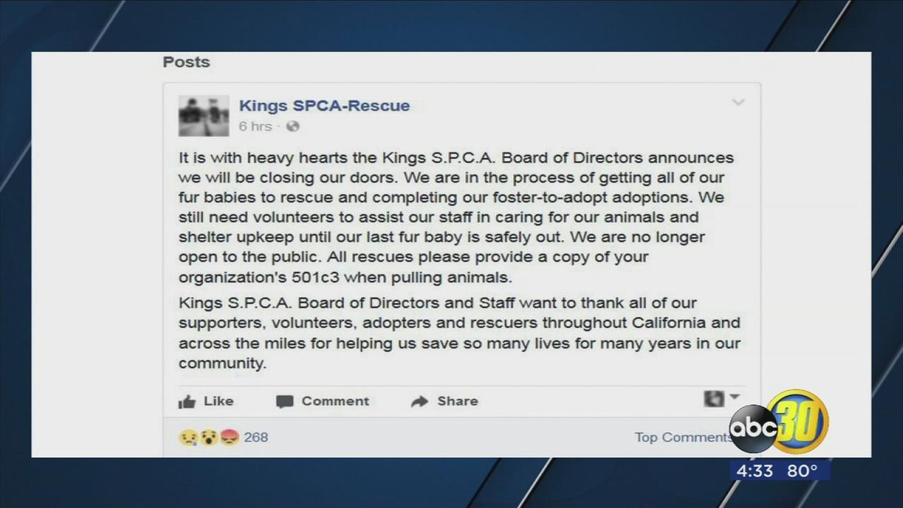 Kings SPCA closing after 60 years of service