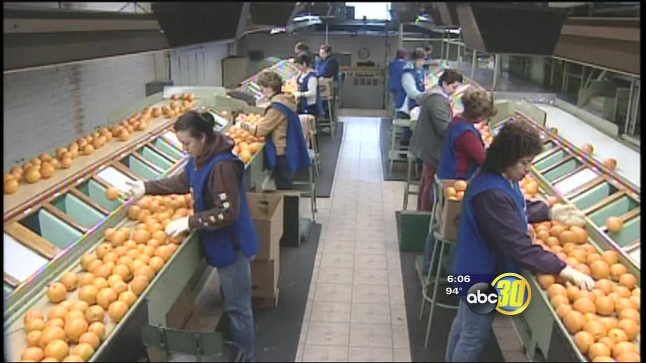 Californias unemployment rate drops to 7.4 percent