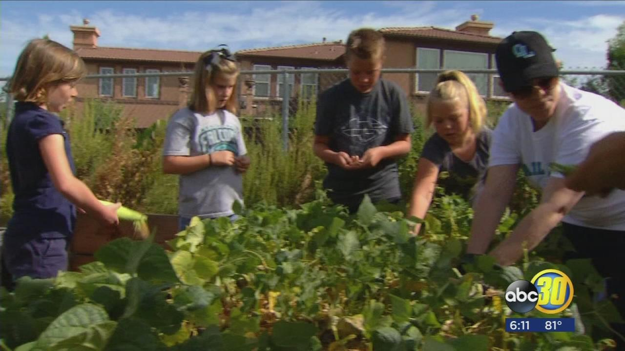 Fresno County school bringing science text books to life with garden