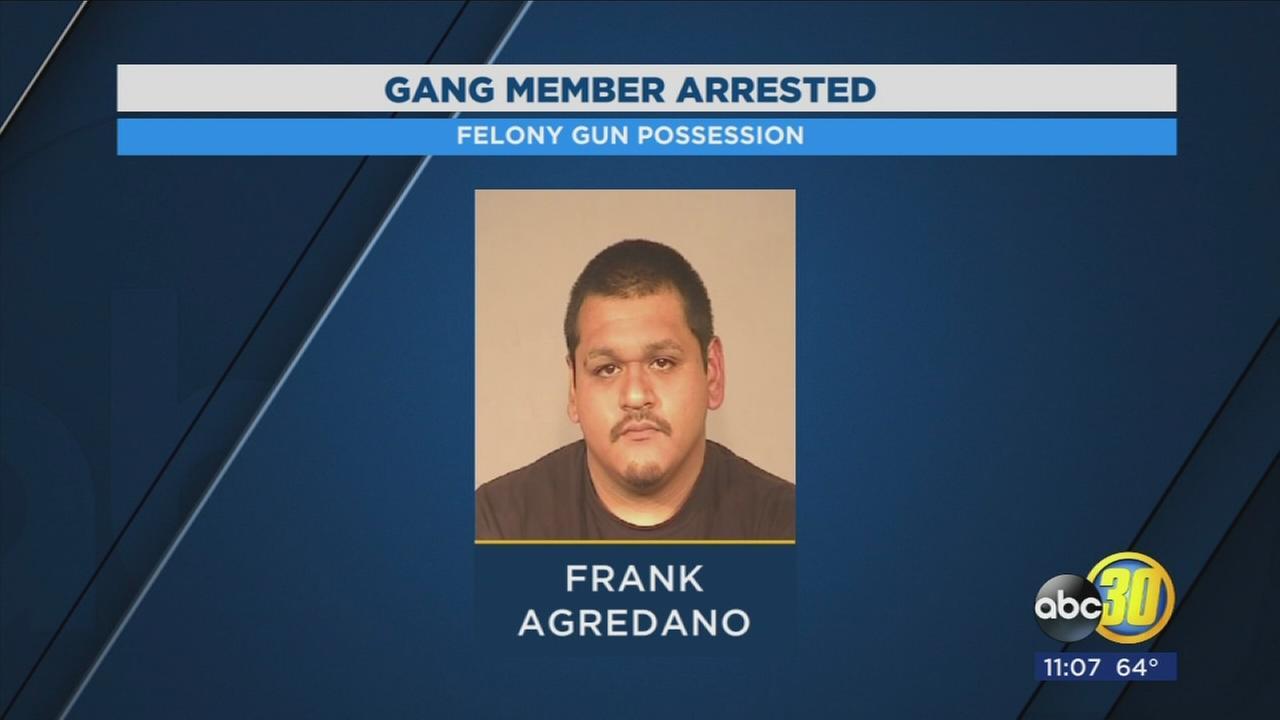 Bulldog gang member arrested in Calwa for felony possession of a gun