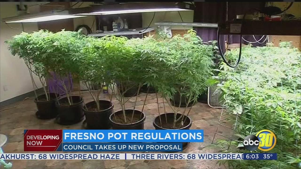 Fresno City Council considering new ordinance that would allow marijuana cultivation in city limits
