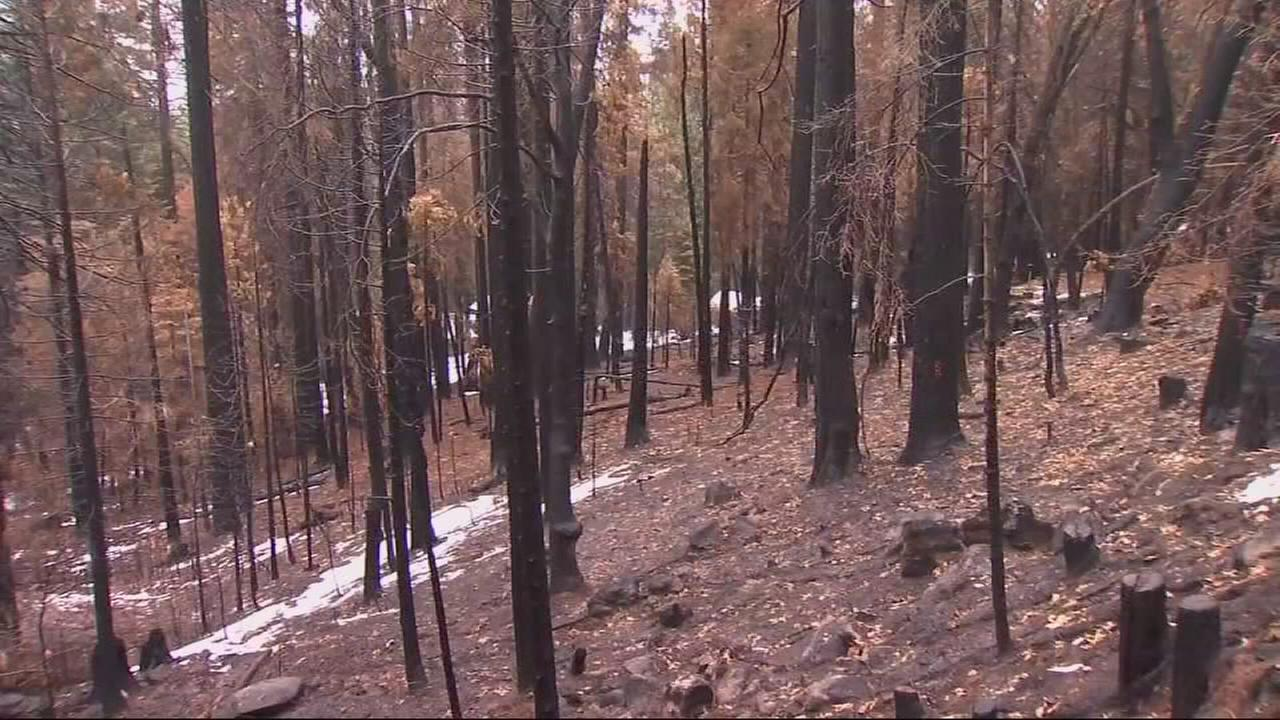 Storm could create problems near wildfire burn scars