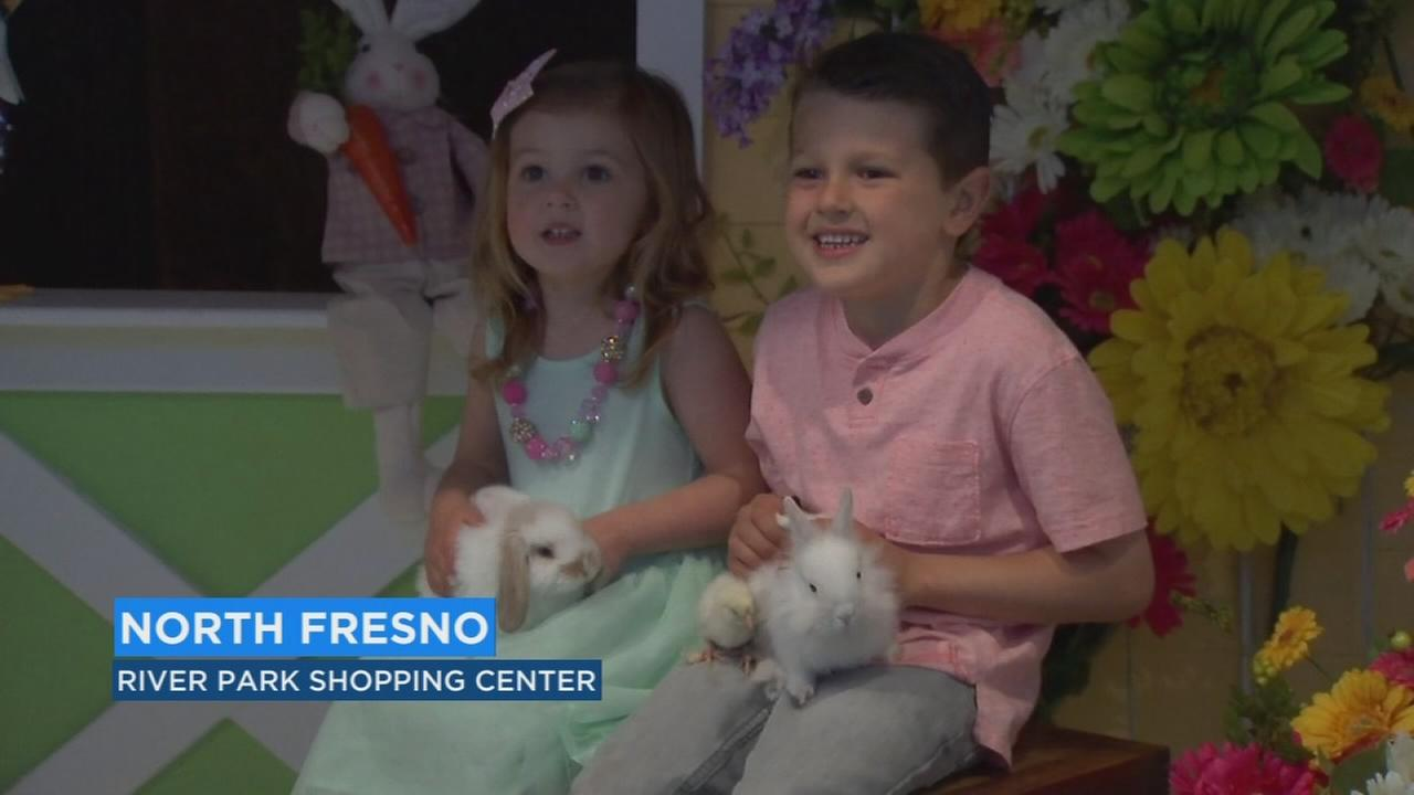 Memories several families made just in time for Easter