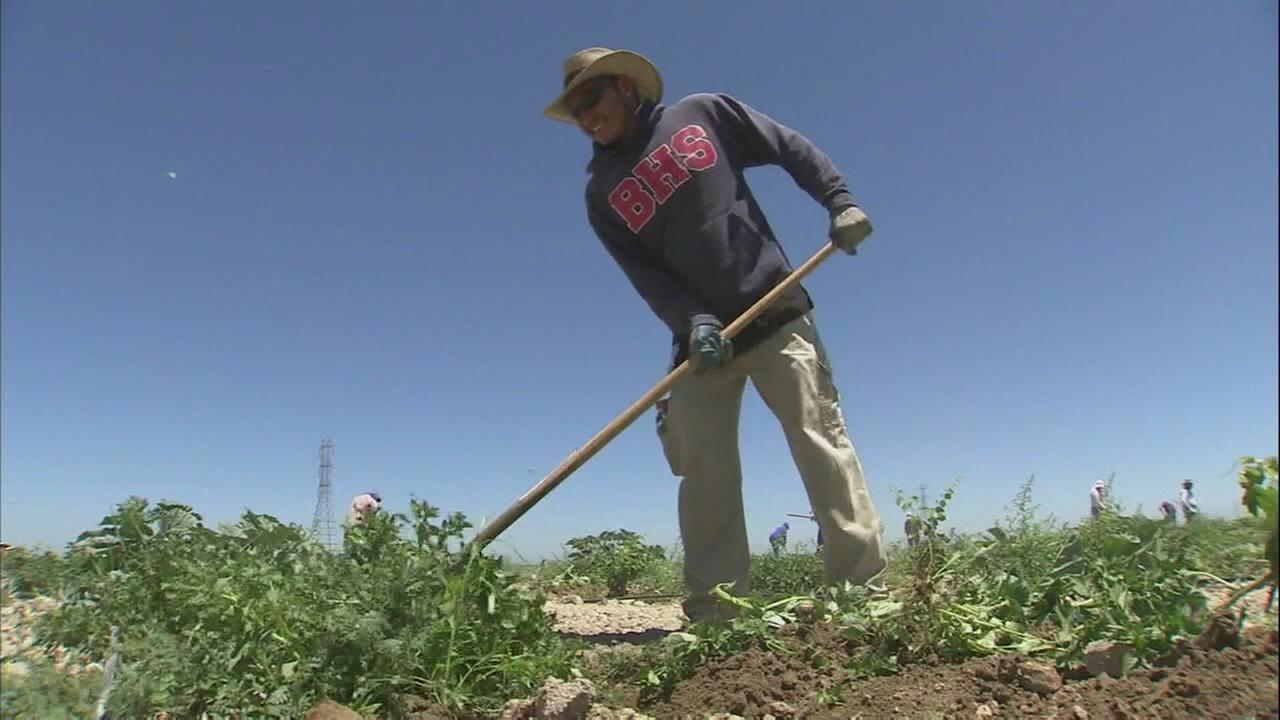 Valley growers take part in heat illness prevention training