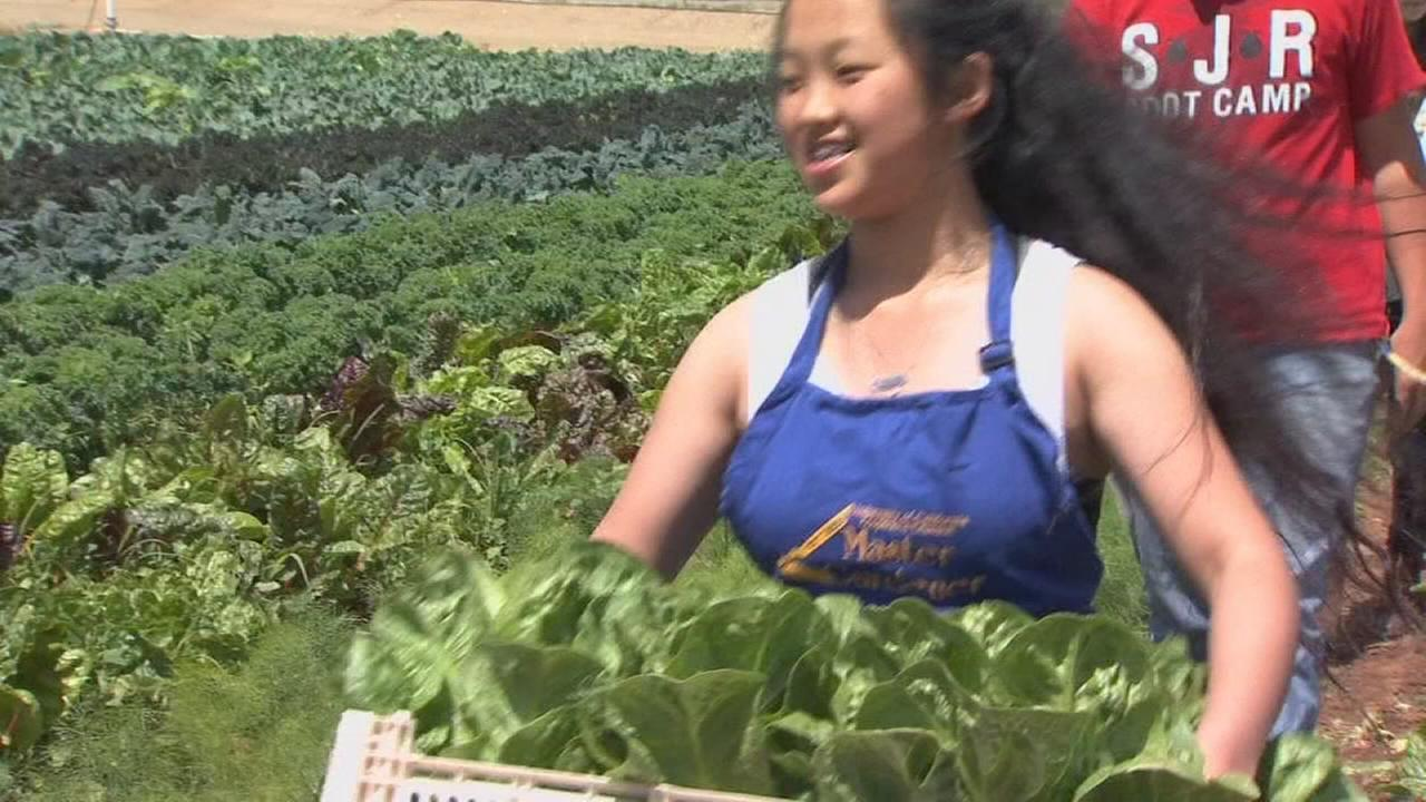 Clovis East Ag students get hands-on experience