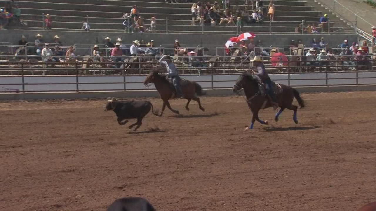 Time to saddle up for the 104th Clovis Rodeo!