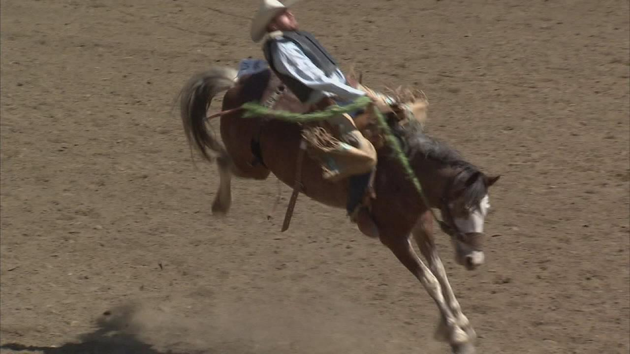 Big crowds expected on Clovis Rodeo Day 2